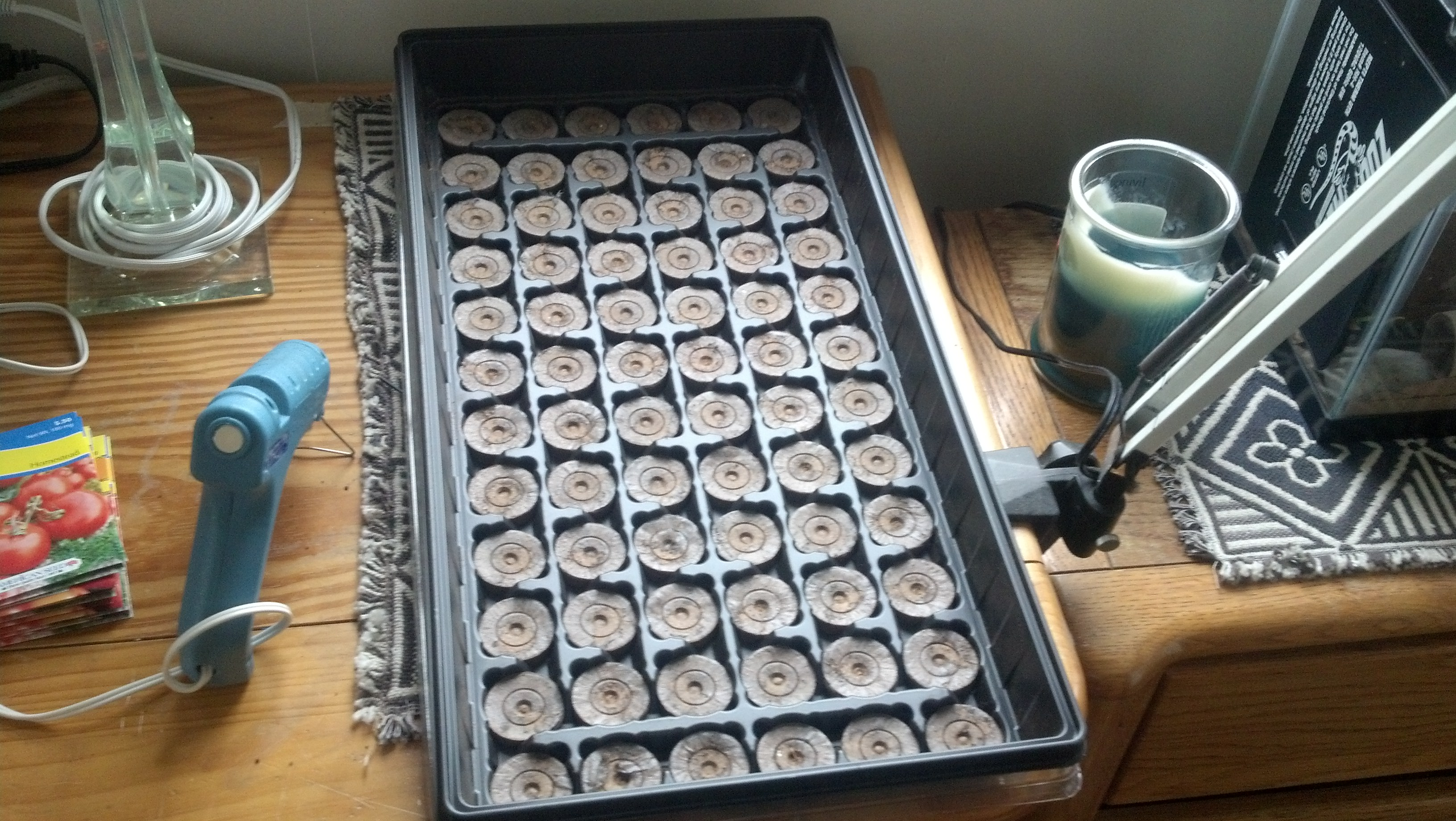 "Here is the ""grid"" of dirt I am using. I got it from walmart or something like that and essentially it is a grid of dehydrated dirt pucks that are good for planting seeds."