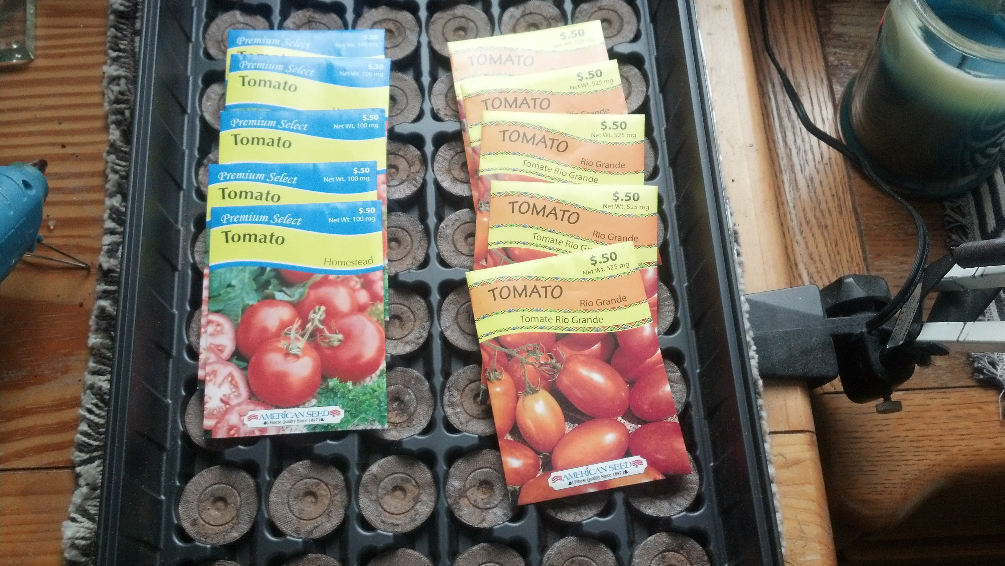 I am using Rio Grand and Homestead seeds. I am going with a shotgun approach and planting a lot of the seeds.